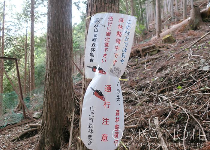登山日記  丹沢/ミツバ岳(大出山)