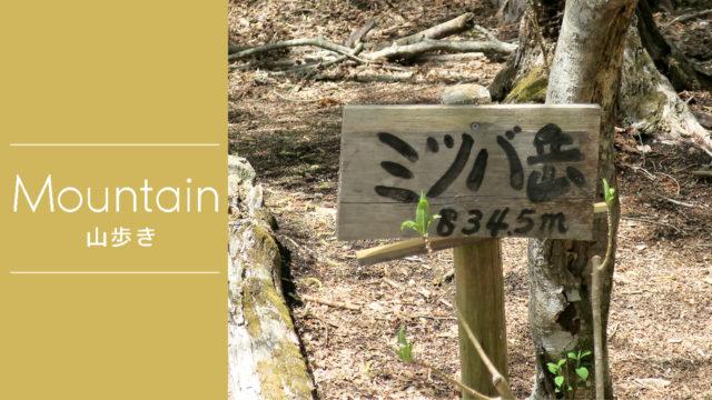 登山日記  丹沢/ミツバ岳(大出山) Part.1