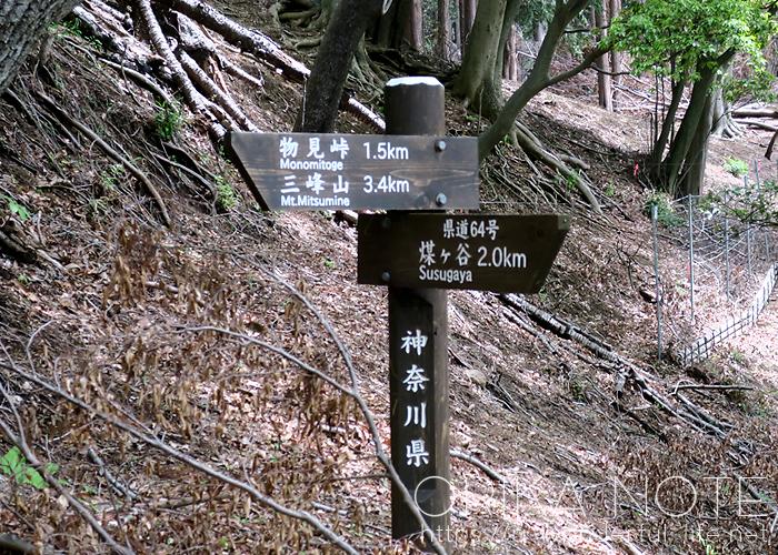 登山日記  丹沢/三峰山(ヤマビルの被害に遭うの巻)