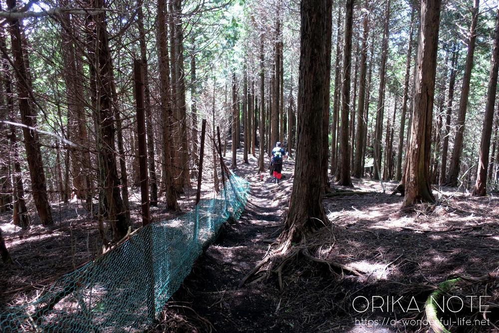 登山の日記(山歩きのブログ) 神奈川・西丹沢の不老山に行ってきました