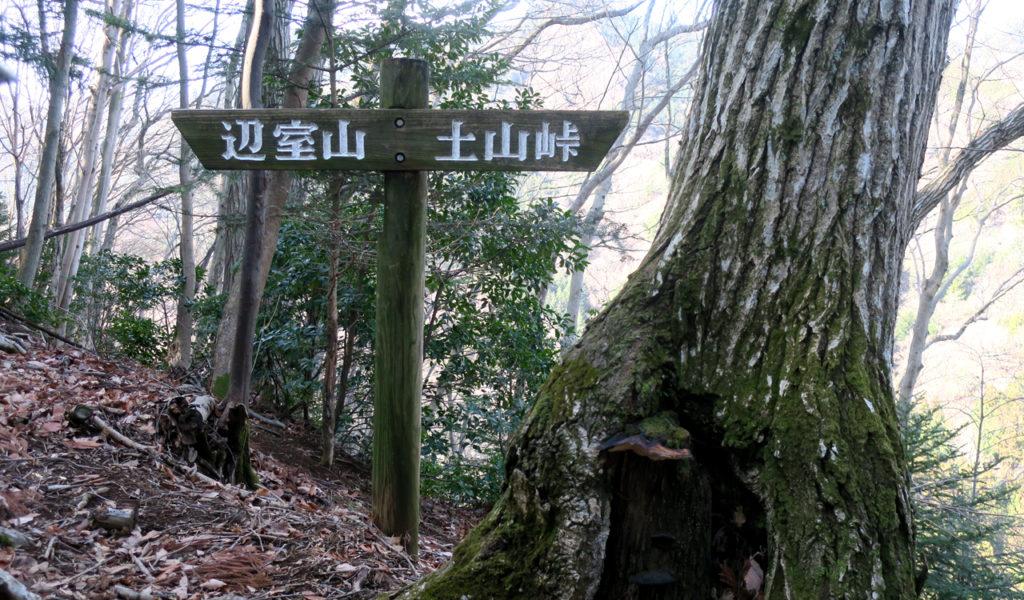 大山三峰山登山 土山峠~煤ケ谷